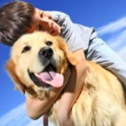 Dogs to Help Children With ADHD